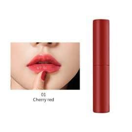 6 Colors Lip Cheek liquid Blush AXW-6CL