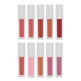 10 Colors Velvet Lip Gloss AXW-10G